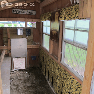 New Nest Box curtains hung in both coops!