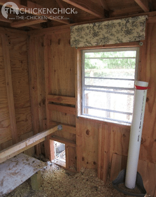 Pop door, awaiting automation. PVC Feeder alongside window. Cap on feeder is essential with rafter-roosters.