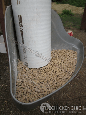 After much research, contemplating dozens of designs and several iterations of my own, I am now happy with my PVC feeder. There are no longer piles of wasted grain on the floor, which makes me, my chickens and my feed budget happy. Mine cost approximately $12.00 to build and was finished in 20 minutes.