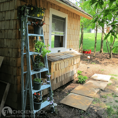 This ladder was a real find at our local landfill- I turned it into a planter for less than three bucks.