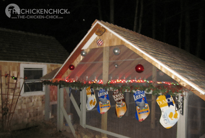 No coop is complete without feed bag stockings for Christmas!