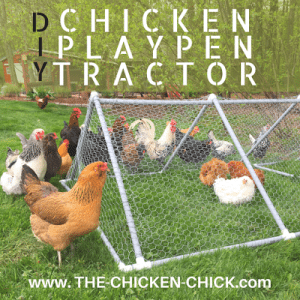 DIY Chicken Playpen Tractor