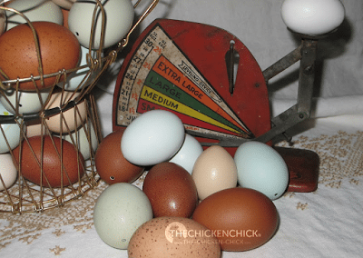 EGG BLOWING 101 & Egg Decorating instructions