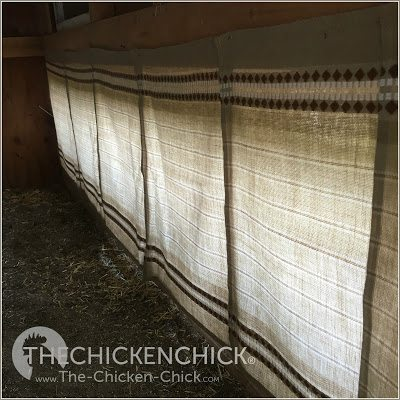 Nest box curtains provide hens with the darkness, privacy and secrecy they insist upon when egg-laying and caring for newly hatched chicks.