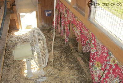 Place a frozen jug of water between the fan and nest boxes during the day and between the fan and roosts at night.