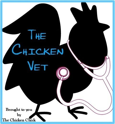 Answers from The Chicken Vet, Dr. Mike Petrik, DVM, MSc on food grade diatomaceous earth, DE
