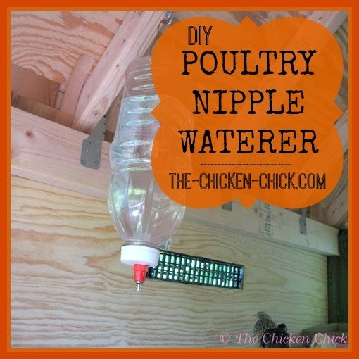 Poultry Nipple Waterer Diy Instructions The Chicken Chick