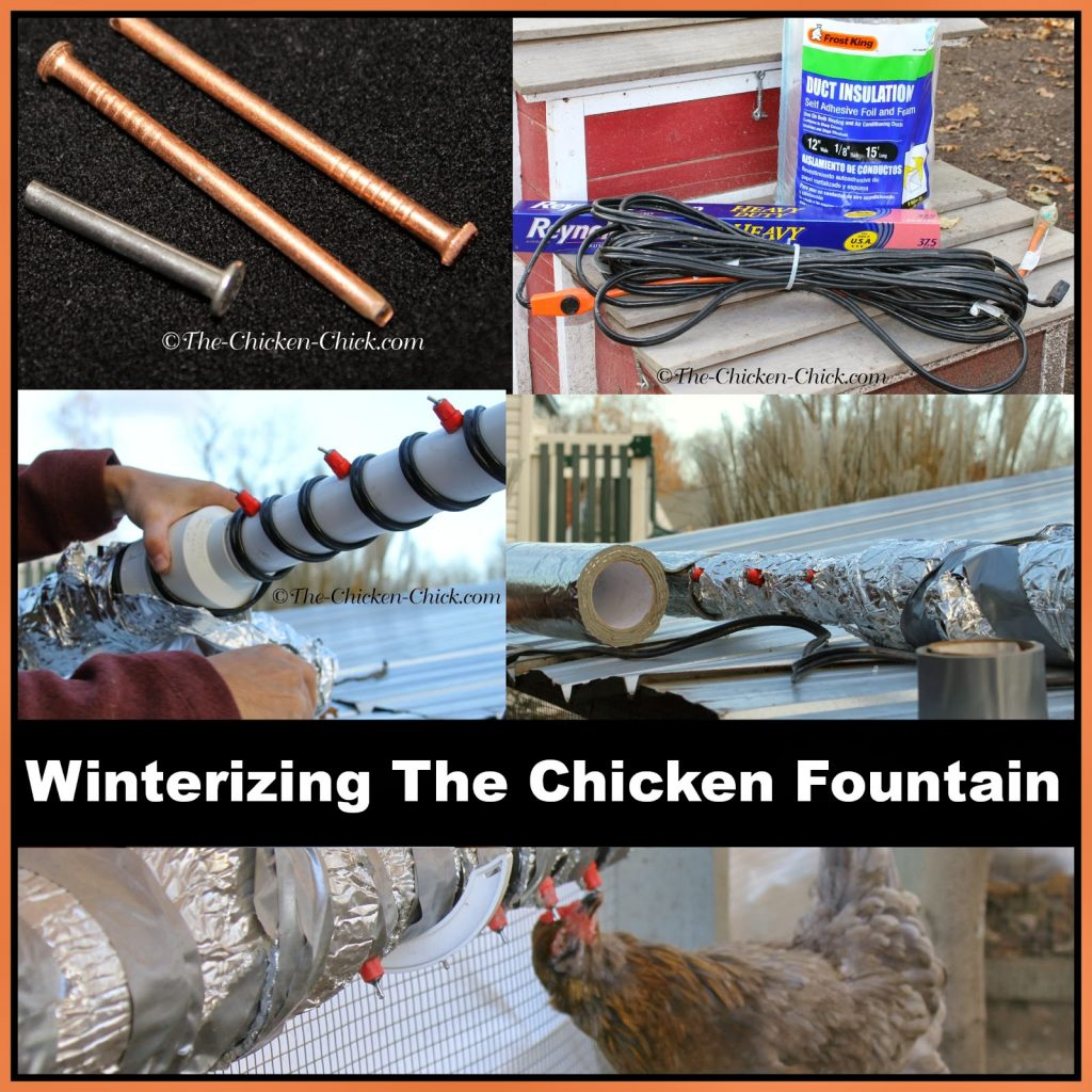 If you use a poultry nipple watering system, you're probably accustomed to packing it up for the winter due to frozen water and frozen pins, but The Chicken Fountain can be used all winter long with no worries about frozen water or frozen pins. Temperatures have gotten down to -25°F without ever freezing. Here's how we winterize our Chicken Fountain in Connecticut.