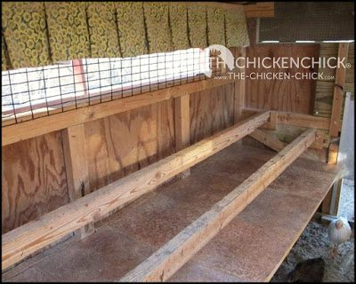 I recommend the use of droppings boards underneath the roost to minimize droppings inside the coop. Droppings boards are essentially a shelf that catches droppings produced from chickens roosting at night.