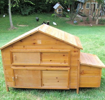 I was no more than 10 houses away from my own when I spotted this tiny chicken coop on the curb, free for the taking. A conversation with the owner revealed that she had given up on chicken-keeping because she couldn't predator-proof her coops. That was unfortunate but not surpising given the poor quality of the workmanship on this little number. Any raccoon worth his salt could get into it by lifting the egg door, the roof or lifting up the front hook-and-eye latch.
