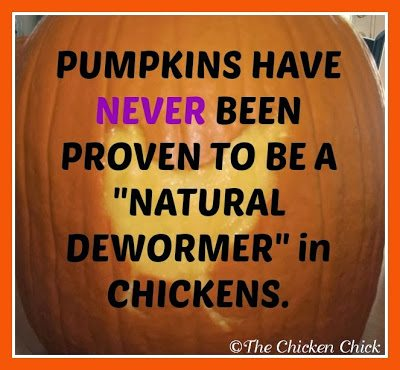 Pumpkins are not a 'natural dewormer' in chickens.