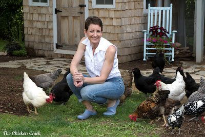 Chicken diapers and saddles | Kathy Shea Mormino, The Chicken Chick®