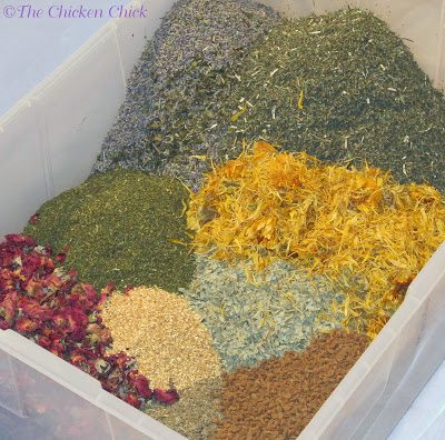 In selecting the herbs for my herbal fusion, I consulted with Master Gardener and Herbalist, Kathie Jones in Forest Hill, MD to ensure their safe use around my chickens. While this mixture is not intended to be eaten, my flock may taste-test bits of it and it's important to me to know that all of these herbs are safe if ingested. I chose the following herbs, based upon their safety, aromatic properties and/or ability to repel pests.