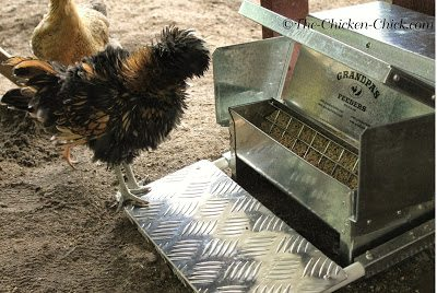 Grandpa's Feeders prevent rodents from eating and contaminating feed.