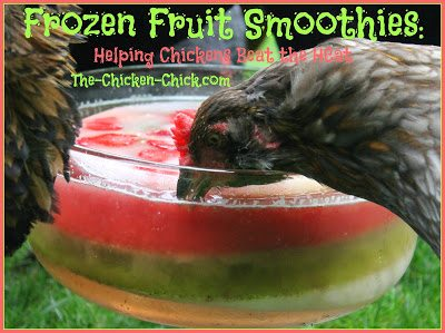 Are your peeps partial to fruit? Consider making them some Frozen Fruit Smoothies!