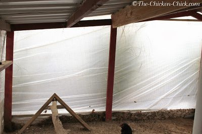 Covering run walls with construction grade plastic sheeting or tarps can serve several purposes: it provides the flock with a warmer run by keeping rain, wind and snow out during the day and it can keep the coop warmer and draft-free at night, depending upon the location of the run relative to the coop. Furring strips should be nailed or screwed to the structure to ensure that the plastic remains in place.