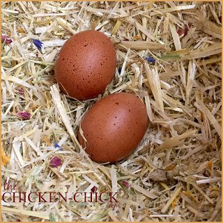 Place more chopped straw on top of the nest pad. Add Spruce the Coop Nest Box Herbs if desired.