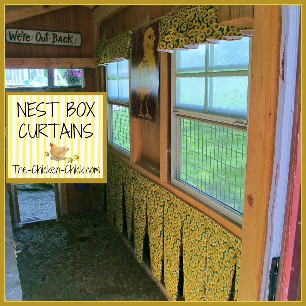 Hens generate heat and the curtains will help keep the heat in the nest box.