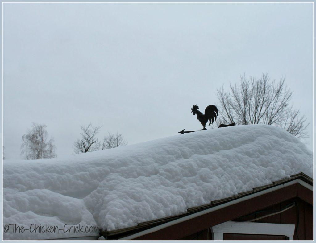Winter chicken coop weathervane