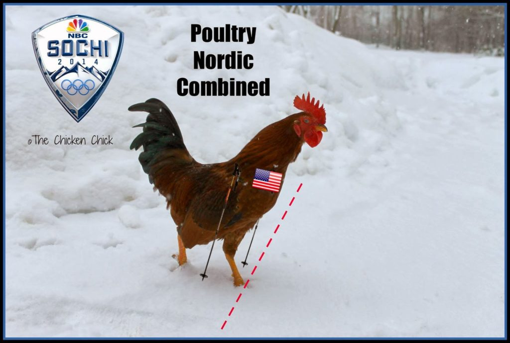 Poultry Olympics, Nordic combined, Team USA