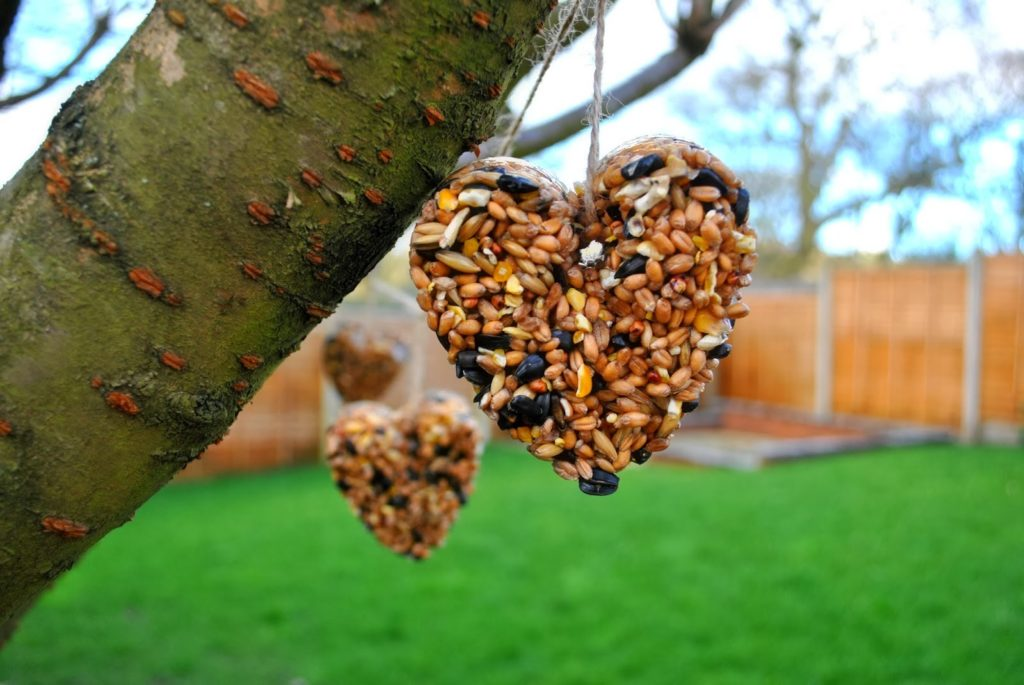 Wild Bird seed hearts tutorial, shared by QuintonWench