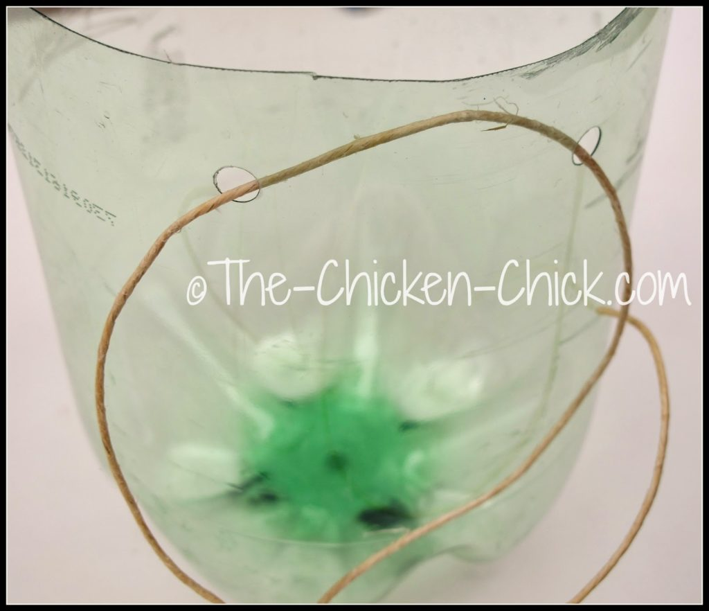 Thread wire through two of the holes and hang the feeder at back-height of the chicken(s).