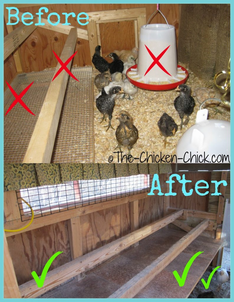 Raise roosts and add a droppings board. Roosts can also be wall-mounted versus a ladder style roost system that attaches to the floor. Adding a suspended droppings board beneath the roosts creates clean, usable floor space.