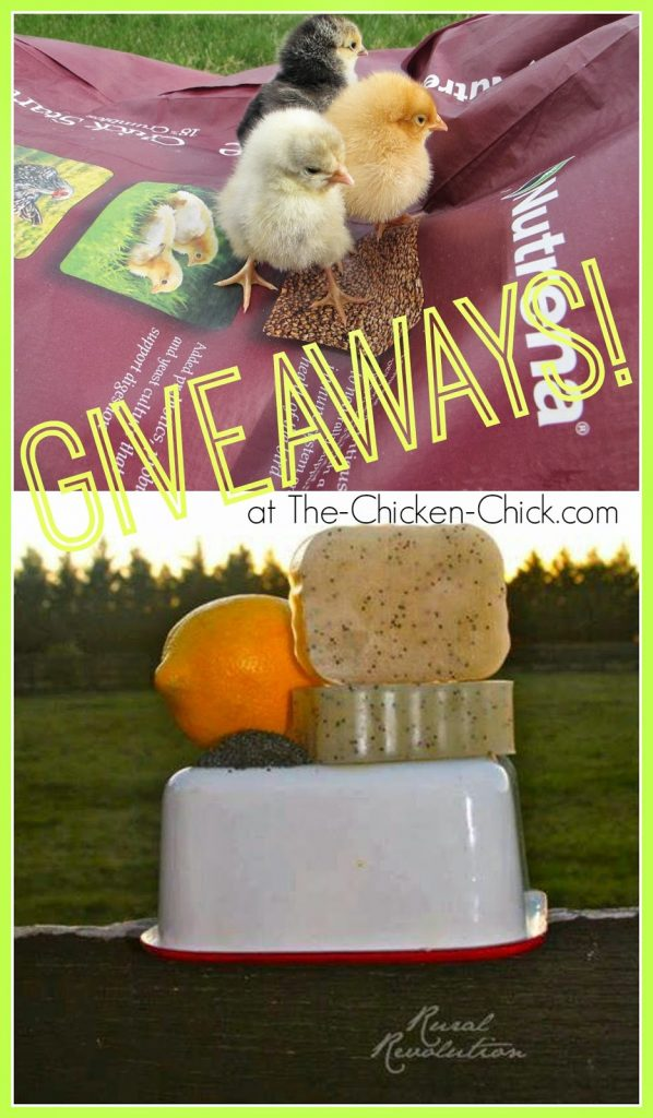 Nutrena Poultry feed Giveaway at The-Chicken-Chick.com