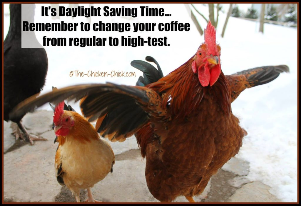 It's Daylight Saving Time...Remember to change your coffee from regular to high-test.