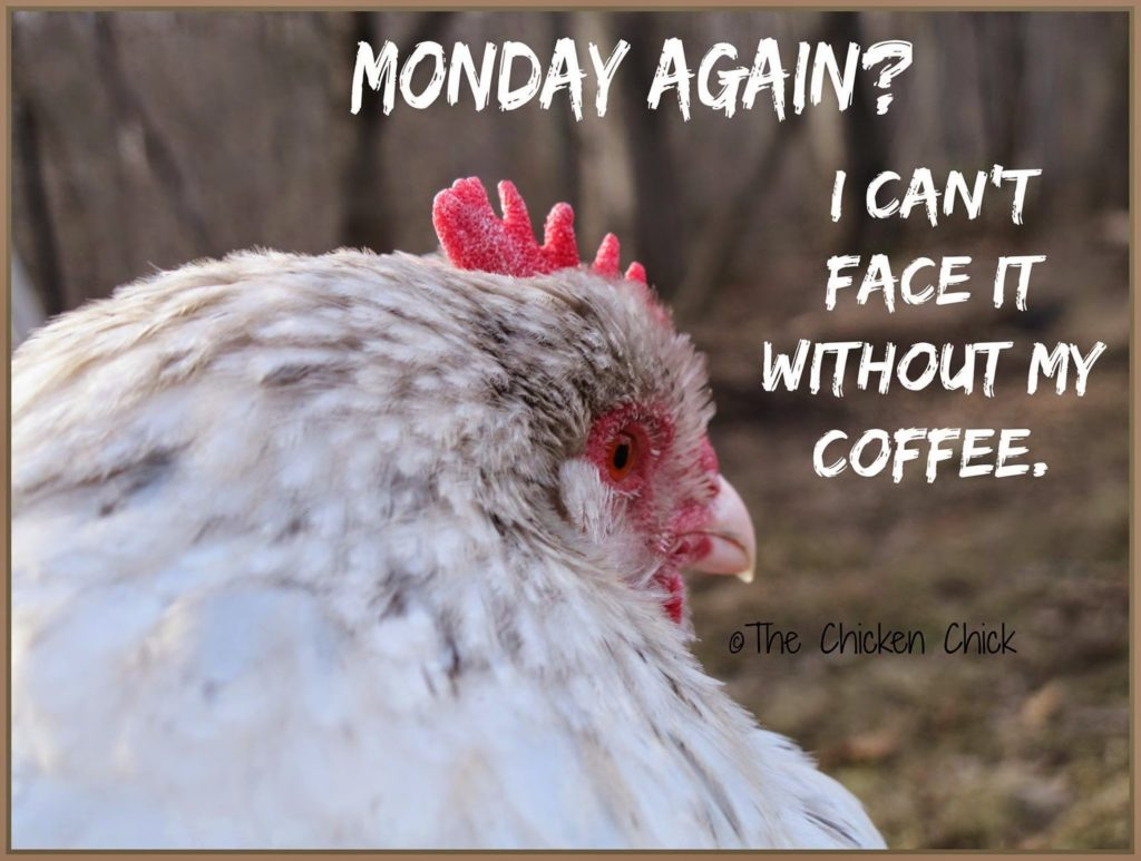 Monday AGAIN? I can't face it without my coffee.