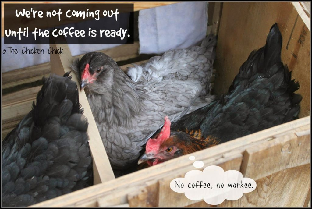 We're not coming out until the coffee is ready.