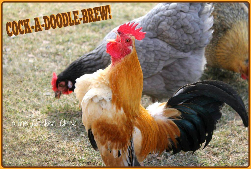Cock-a-doodle brew!