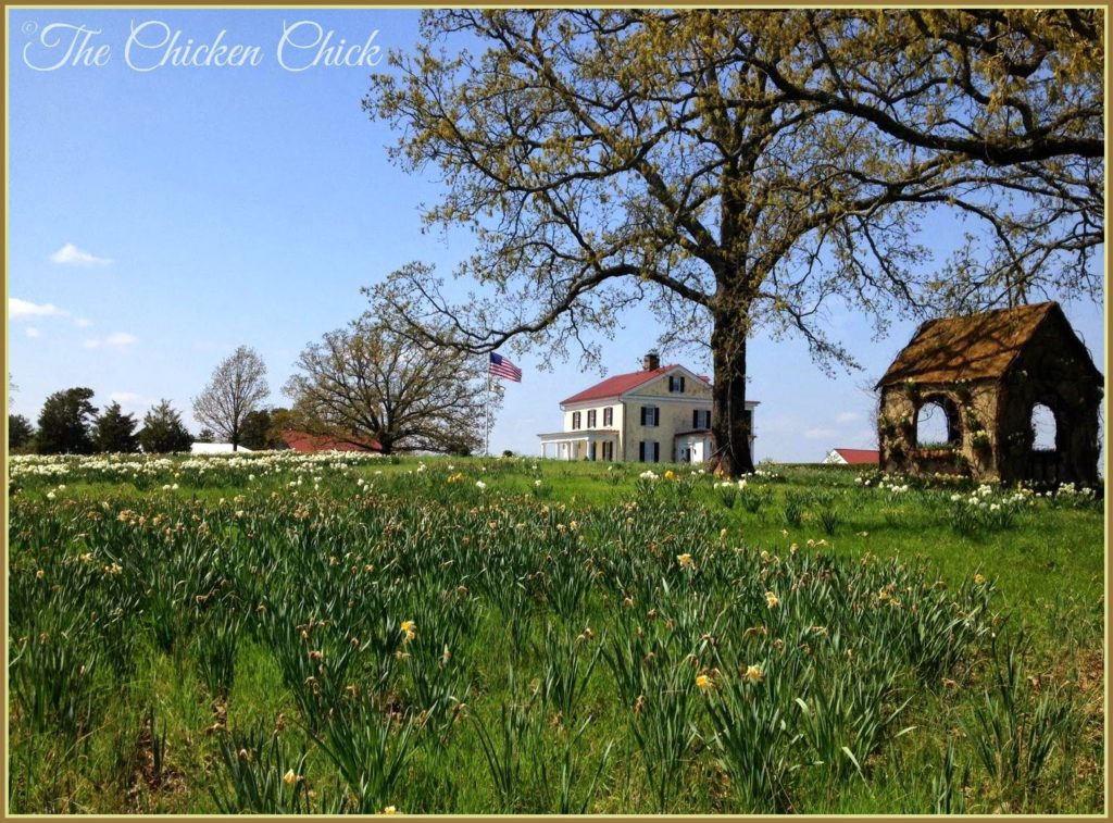 P Allen Smith's Garden Home