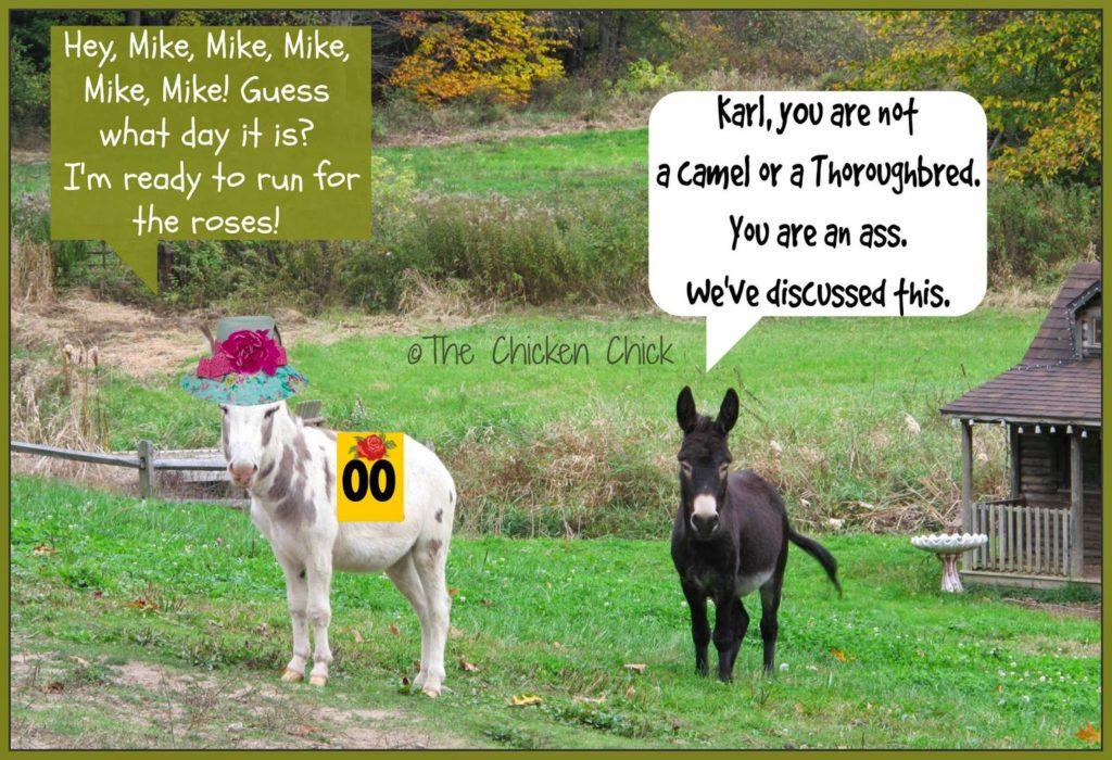 Kentucky Derby donkeys.