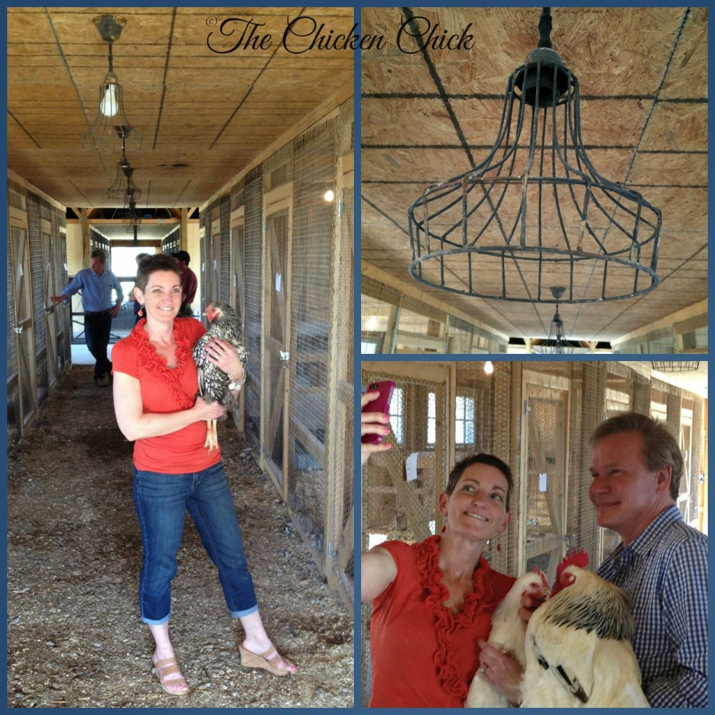 Kathy Shea Mormino, inside the chicken barn with P Allen Smith filming television and radio segments.