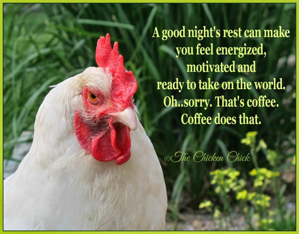 A good night's rest can make you feel energized, motivated and ready to take on the world. Oh...sorry. That's coffee. Coffee does that.