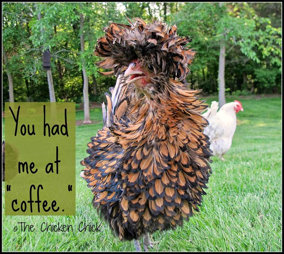 "You had me at ""coffee."""