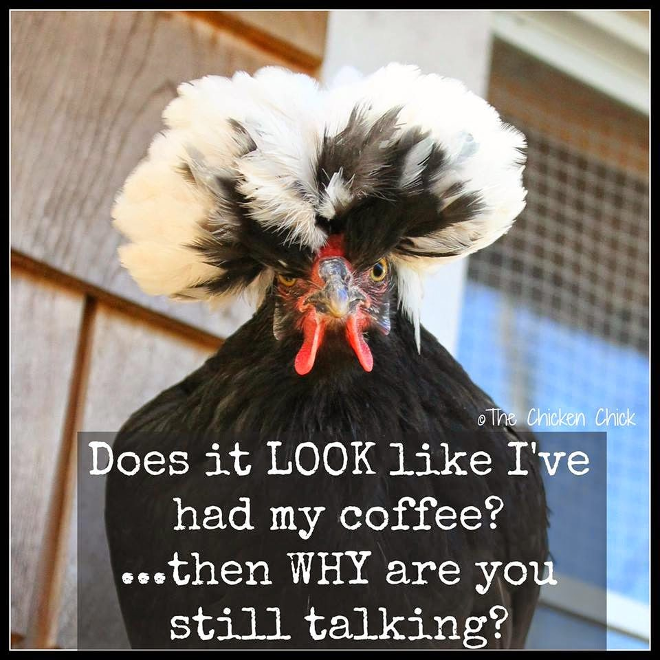 Does it LOOK like I've had my coffee? ...then WHY are you still talking?