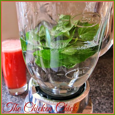 In a blender or food processor, place one of the fruits or mint and cover with as much water as desired. Blend until liquefied and set aside. Repeat this step with each remaining ingredient.