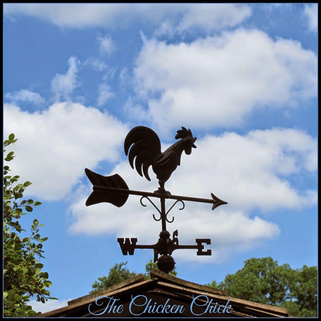 Chicken coop weather vane.