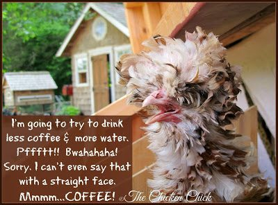 I'm going to try to drink less coffee & more water. Pffftt!! Bwahahaha! Sorry. I can't even say that with a straight face. Mmmmm....COFFEE!
