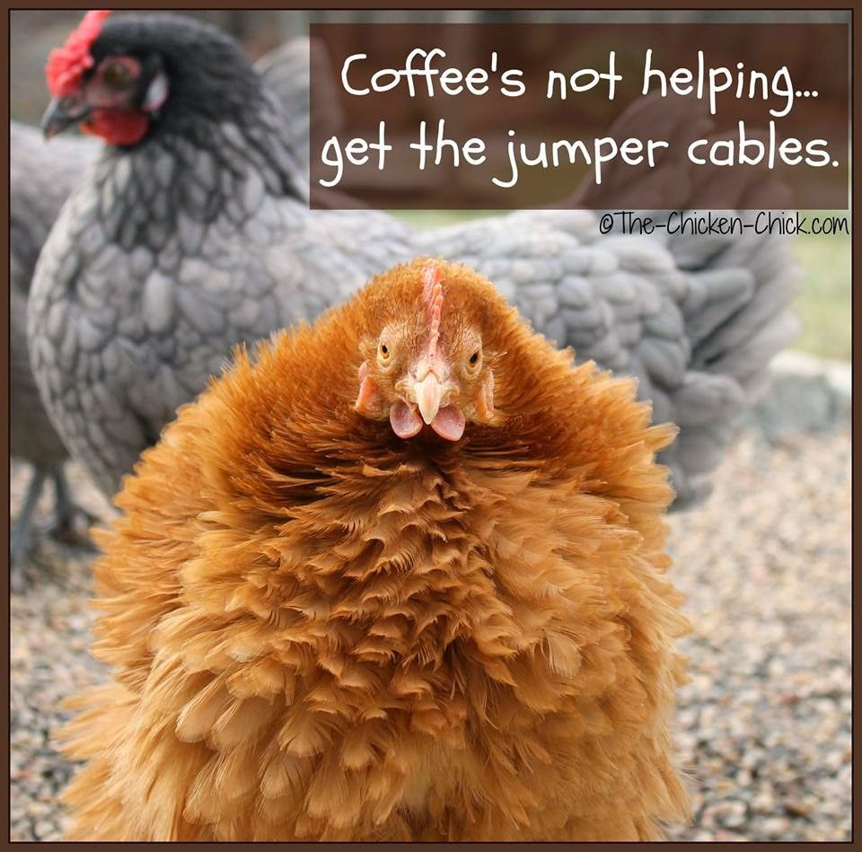 Coffee's not helping...get the jumper cables.