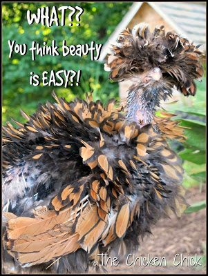 What?? You think beauty is EASY?!