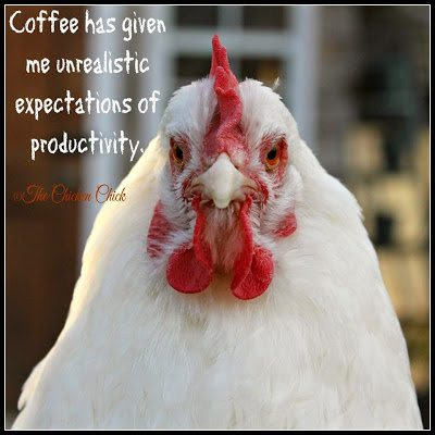 Coffee has given me unrealistic expectations of productivity.