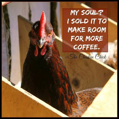 My soul? I sold it to make more room for coffee.