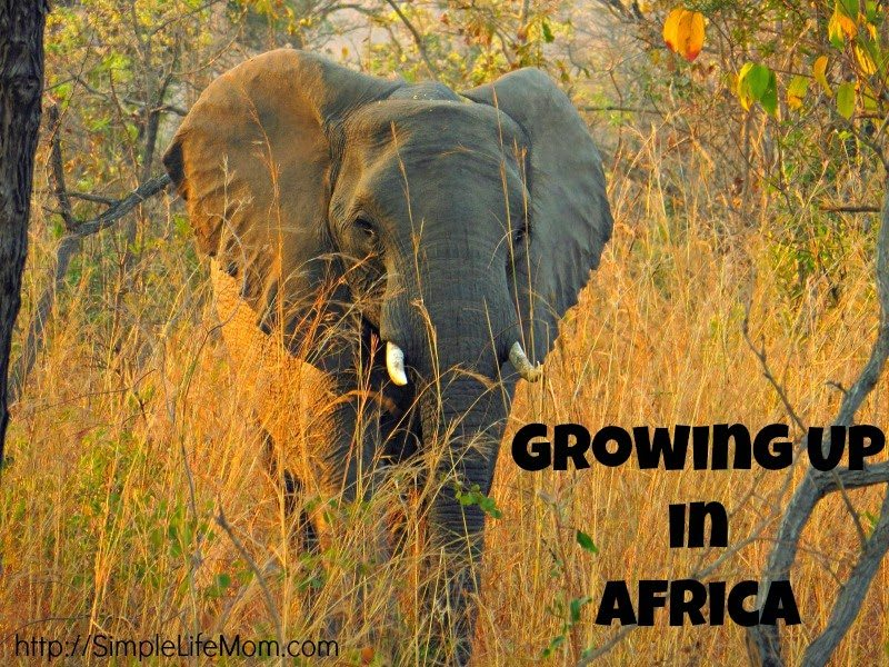 Growing Up in Africa, shared by Simple Life Mom