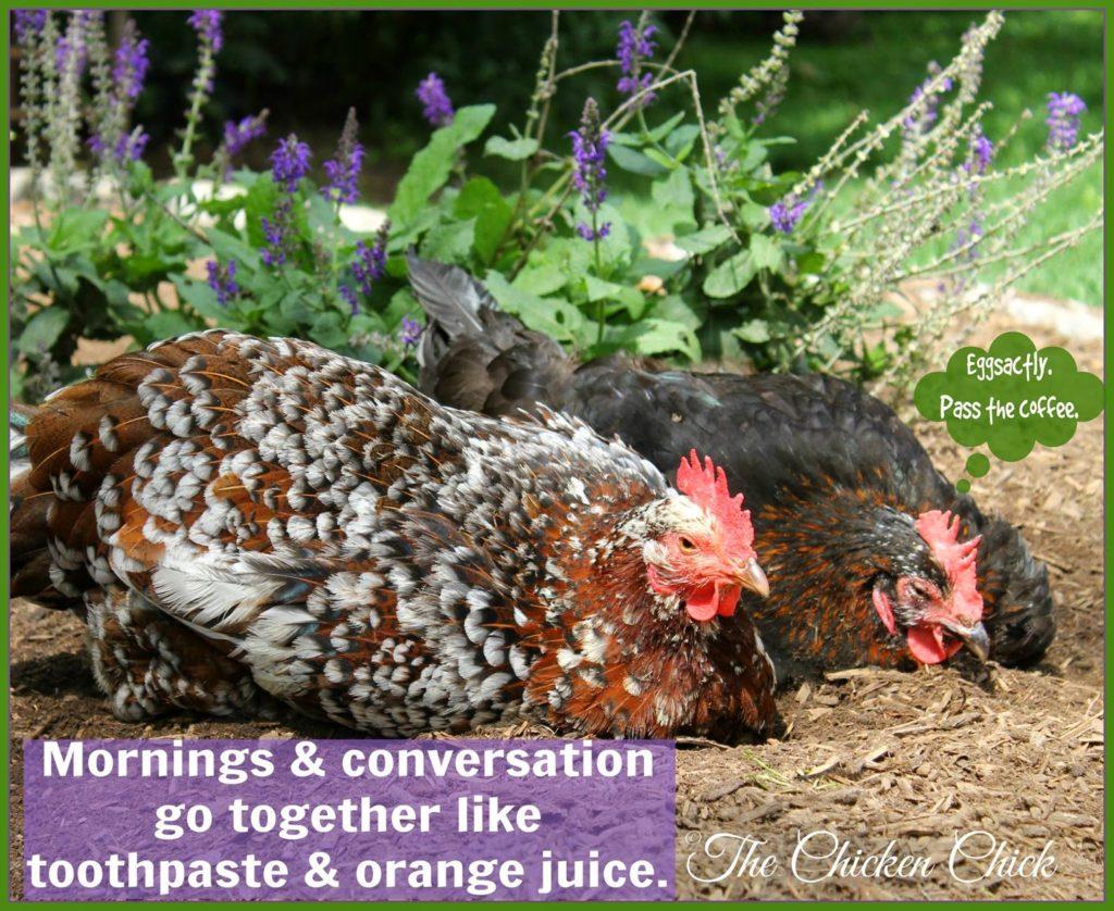 Mornings & conversation go together like toothpaste & orange juice.