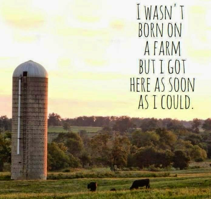 Wasn't Born on a Farm, but I Got Here as Soon as I could, shared by The Olde Barn