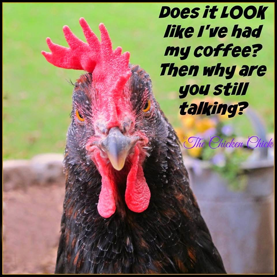 Does it LOOK like I've had my coffee? Then why are you still talking?