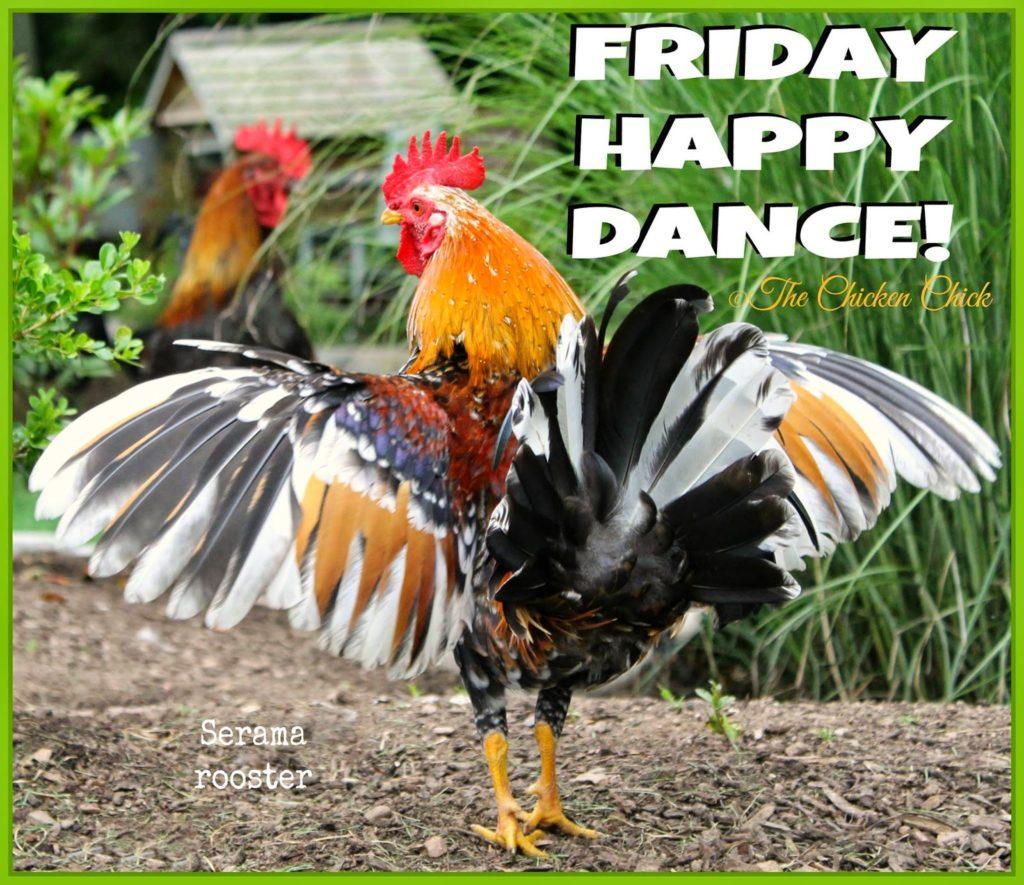 Friday Happy Dance!